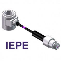 Čo je IEPE / ICP štandart?